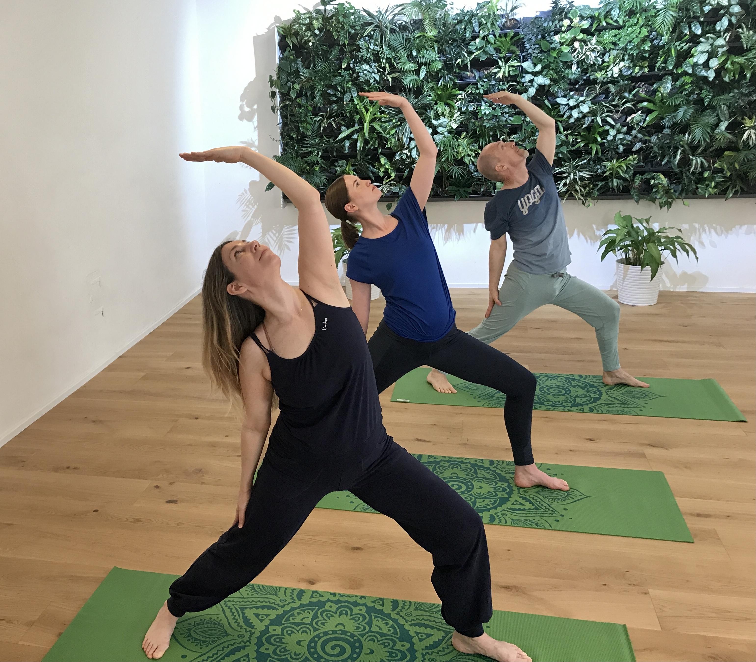 Yoga für Anfängerinnen und Anfänger: jetzt beginnen!