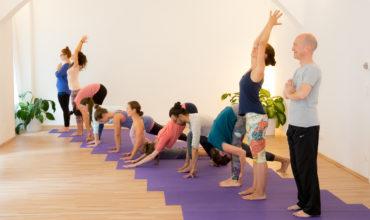 Yoga-Anfängerkurs Wien, Schnupperstunde für Yoga-Einsteiger mit der FREIRAUM-Chefin Katharina Rainer-Trawöger