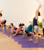 Yoga-Anfängerkurs Wien, Schnupperstunde für Yoga-Einsteiger mit Barbara Beilner