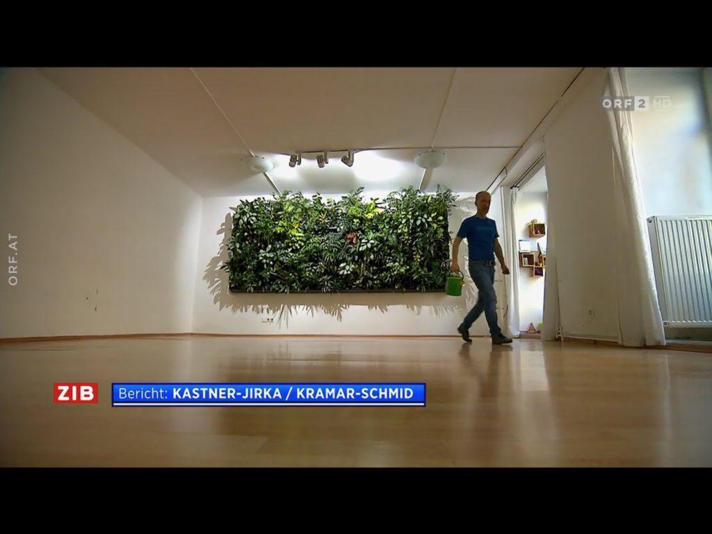 Unmittelbar vor der Renovierung: der Yoga-Raum im Erdgeschoss (Raum 1).